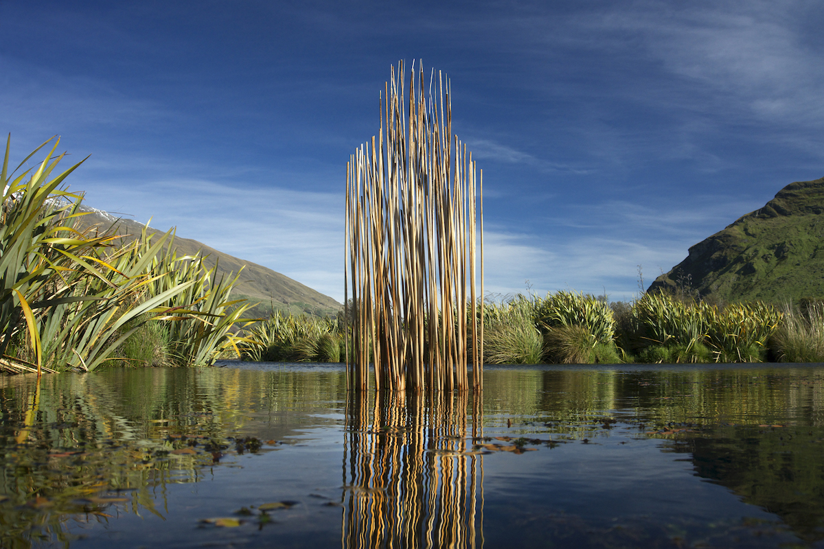 Wetland Guardian © Martin Hill and Philippa Jones